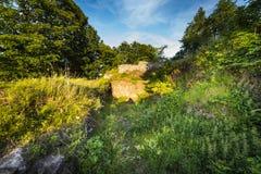 Руины замка на Rogowiec Стоковые Изображения