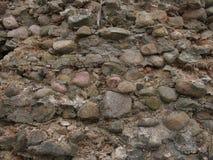 Руины замка Golshansky Беларусь Стоковое Фото