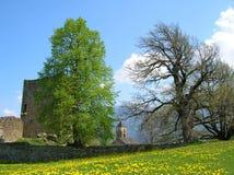 Руины замка Hohen Raetien около Thusis, Швейцарии Стоковые Фотографии RF
