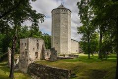 Руины замка Paid средневекового, Эстонии Стоковые Фотографии RF
