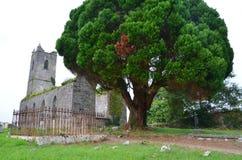 Руины Ирландии Стоковые Фотографии RF