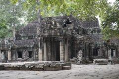 Руины и виски Angkor Wat Камбоджа ужинает siem Стоковое Изображение