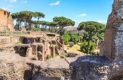 Руины и сад Palatin на Roma Стоковые Изображения RF