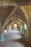 Руины монастыря Finchale - undercroft frater стоковое фото rf