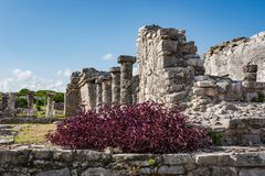 Руины на археологических раскопках Tulum, Quintana Roo, Мексике Стоковое фото RF
