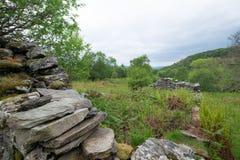 Руины на Glenan, Portavadie Стоковые Изображения RF