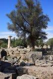 Руины Олимпии Греции Стоковое Изображение