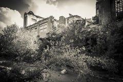 Руины покинутой индустрии Стоковые Изображения RF