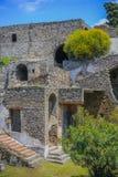 Руины Помпеи - время весны, зацветая кусты стоковые изображения rf