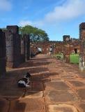 Руины полетов san ignacio иезуита мини в misiones в Аргентине Стоковое Фото