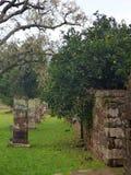 Руины полетов san ignacio иезуита мини в misiones в Аргентине Стоковая Фотография RF