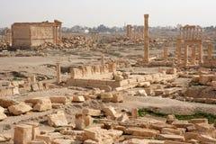 Руины древнего города пальмиры - Сирии Стоковые Фото