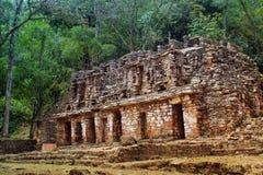 Руины древнего храма в джунглях южной Мексики Стоковые Изображения