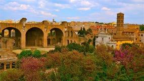 Руины римской бани Стоковые Изображения RF