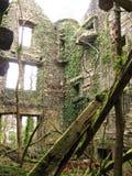 Руины сельских домов Стоковое Изображение RF