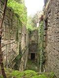 Руины сельских домов Стоковые Фотографии RF