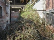 Руины стальных изделий Ferrero в Settimo Torinese стоковое фото