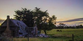 Руины старого австралийского дома фермы Стоковое фото RF