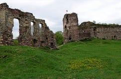 Руины старого замка в поле, где растущие трава весны и цветки весны против темно-синего неба стоковые изображения rf