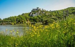 Руины старого замка на реке подпирают, Les Andeles, Fran Стоковое Изображение RF