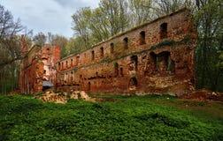 Руины старого замка сделанного кирпича в расчистке в древесинах Стоковое Изображение