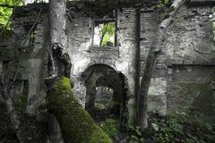 Руины старого дома Стоковые Фото