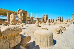 Руины 100 столбцов Hall, Persepolis, Ирана Стоковая Фотография RF