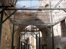 Руины укрепленные решетки стоковая фотография rf