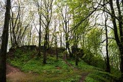Руины форта на холме в древесинах Стоковые Фотографии RF
