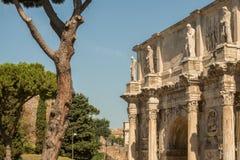 руины форума римские Стоковая Фотография RF