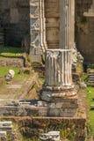 руины форума римские Стоковые Фотографии RF