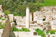 руины amathus стоковые фото