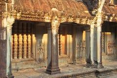 Руины Angkor Wat в джунглях Стоковые Изображения