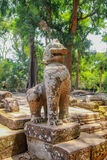 Руины Angkor Wat в джунглях Стоковые Фотографии RF