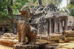 Руины Angkor Wat в джунглях Стоковое Изображение RF