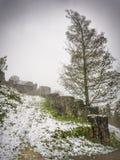 Руины Hohenfreyberg Стоковое Изображение RF