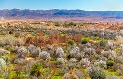Руины Kasbah в долине роз, Марокко Стоковое Фото