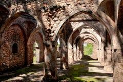 Руины Kilwa Kisiwani в Танзания стоковые изображения rf