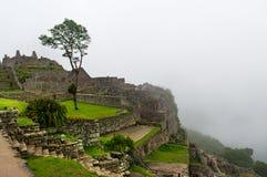 руины picchu machu Стоковое фото RF