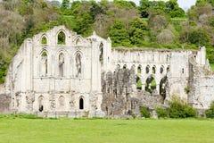 руины rievaulx аббатства стоковое изображение rf