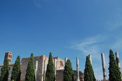 руины rome palatine Италии римские стоковая фотография