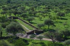 Руины Shinkal стоковые фотографии rf