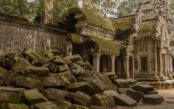Руины Ta Phrom Стоковое Изображение RF