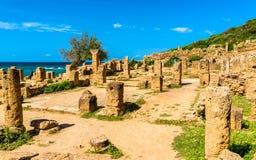 Руины Tipasa, римское colonia в Алжире, Северная Африка стоковое изображение rf