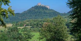 Руины Trifels, немецкий винный маршрут, Германия Стоковое фото RF