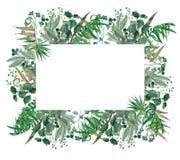 Рука акварели покрасила зеленую рамку, венок лист, шаблон приглашения Стоковые Фото