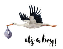 Рука акварели покрасила белого аиста летая с младенцем девушки Вручите покрашенную иллюстрацию птицы аиста изолированную на белиз Стоковое Изображение RF