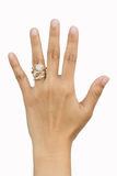 Рука вдовы Стоковое Изображение RF