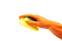 Рука в резиновой перчатке держа отечественную губку на белизне Стоковое Фото