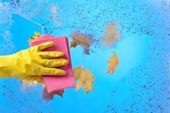 Рука в резиновом окне чистки перчатки на предпосылке голубого неба Стоковые Изображения RF